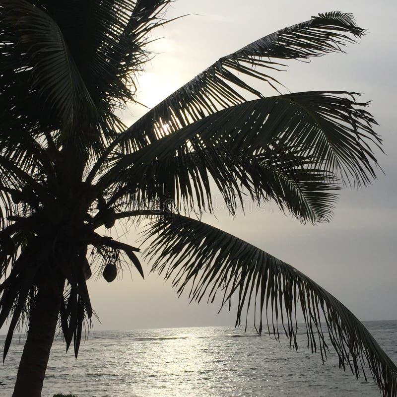 Вид на океан утра стоковое изображение