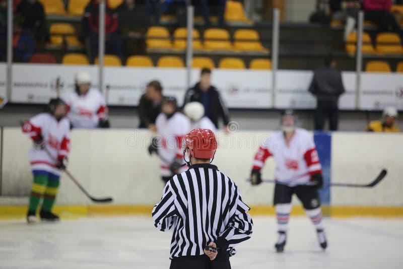 Вид сзади рефери хоккея на льде стоковое изображение