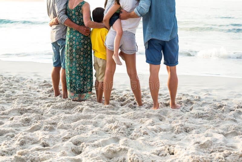 Вид сзади счастливой семьи представляя на пляже стоковая фотография rf