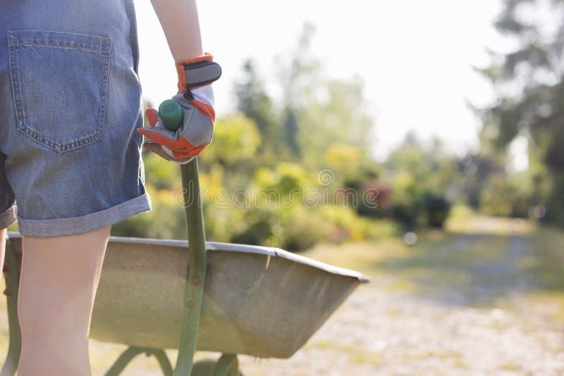 Вид сзади Midsection женского садовника нажимая тачку на питомнике завода стоковое фото