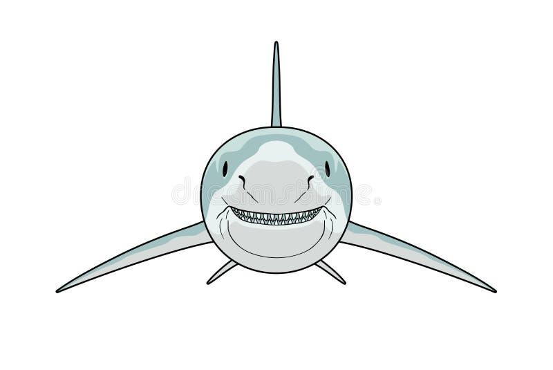 Вид спереди акулы иллюстрация вектора