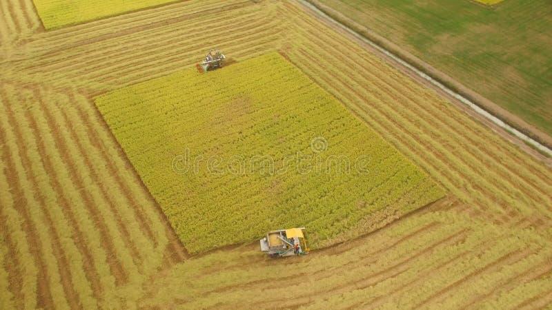 Вид с воздуха зернокомбайна на поле сбора стоковое изображение