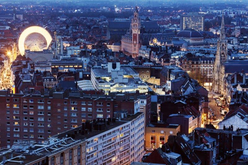 Вид с воздуха Лилля стоковые фото