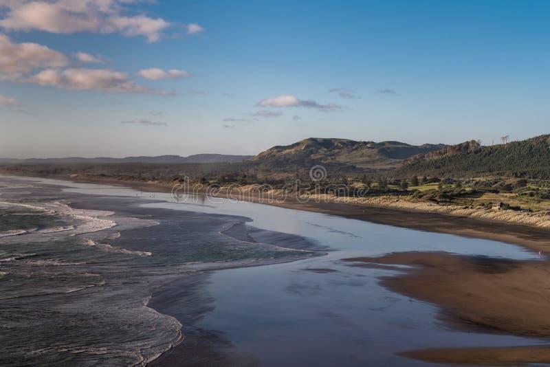 Вид с воздуха над пляжем Muriwai стоковое фото rf