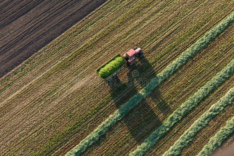Вид с воздуха полей сбора с трактором стоковые фотографии rf