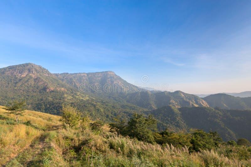 Вид с воздуха тропических горы и облачного неба стоковые изображения rf