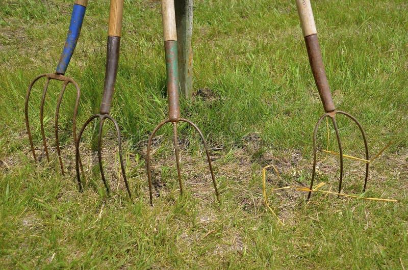 Вилы для регулировать солому и сено стоковое фото
