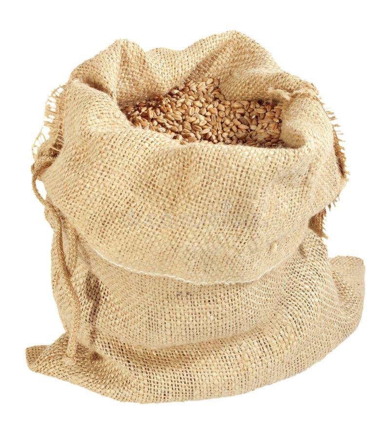 вкладыш зерна стоковые изображения rf