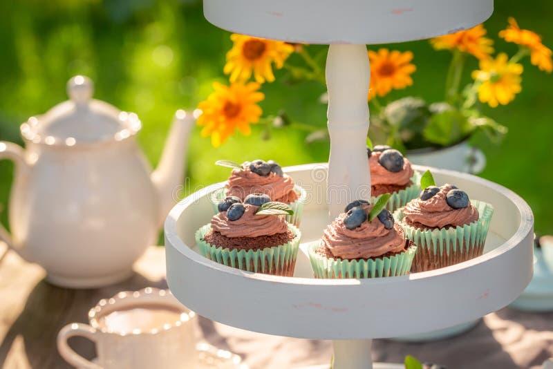 Вкусная булочка шоколада служила с кофе в саде лета стоковое изображение rf
