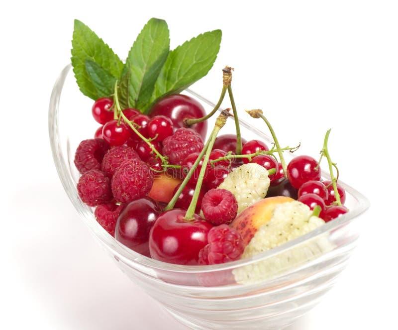 Вкусная ягода смешивания в шаре стоковые фото