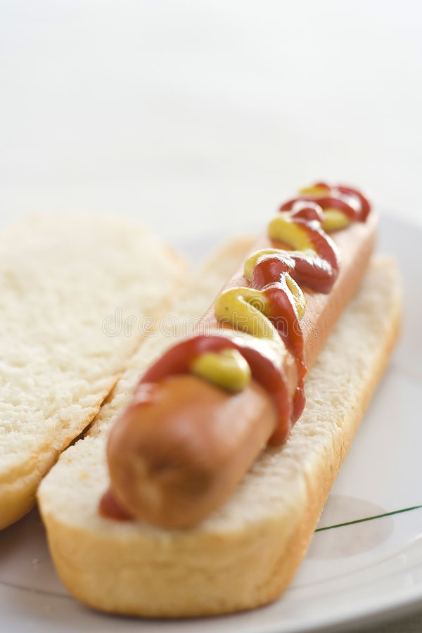 вкусное быстро-приготовленное питание собаки горячее стоковое фото rf
