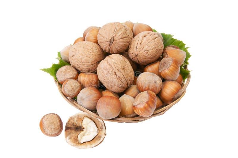 вкусное корзины nuts зрелое стоковые фото