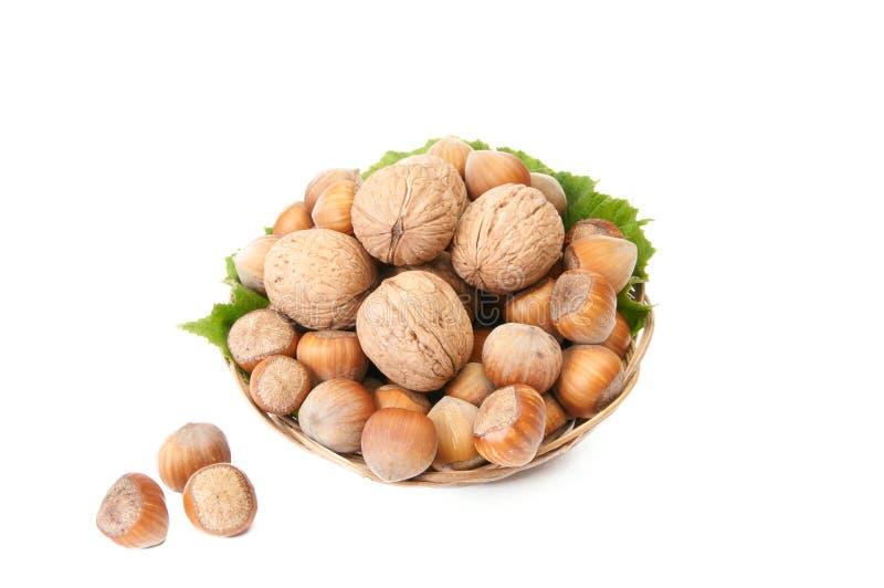 вкусное корзины nuts старое зрелое стоковое изображение