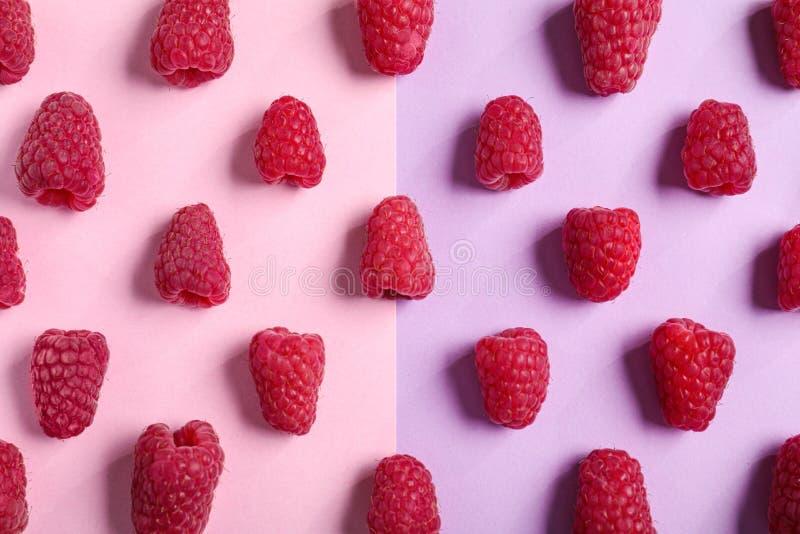 Вкусные зрелые сочные поленики на предпосылке цвета, стоковые изображения rf