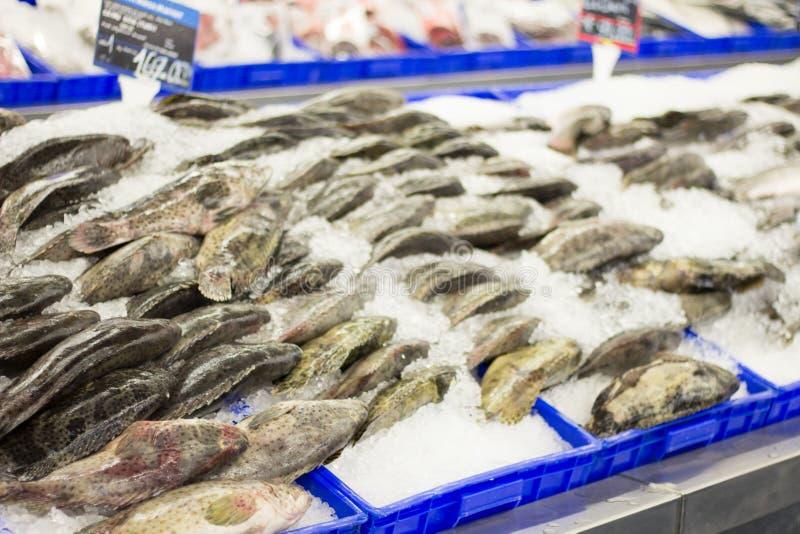 Вкусные свежие рыбы кладут в лед в рынке стоковое изображение