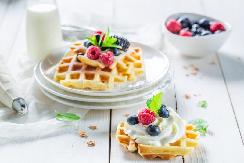 Вкусные waffles с плодоовощами ягоды и взбитой сливк стоковое изображение rf