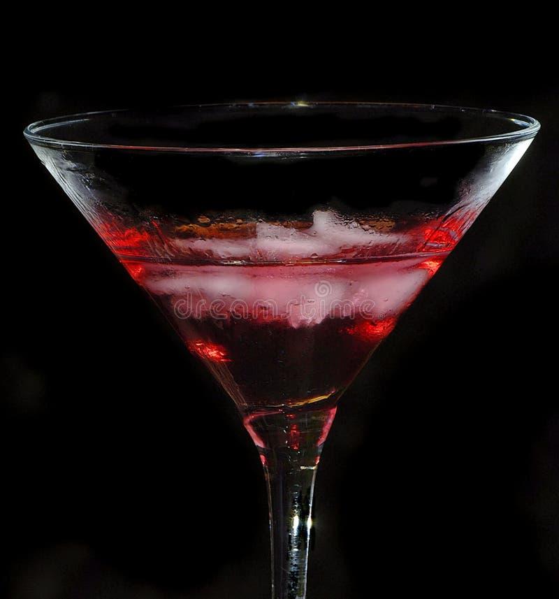 вкусный красный цвет стоковая фотография rf