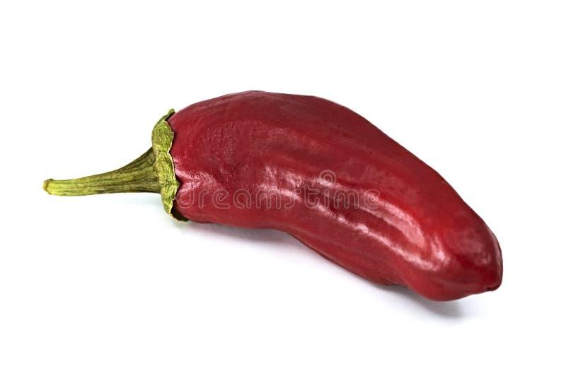 Вкусный накаленный докрасна Chili Jalapeno стоковые фотографии rf