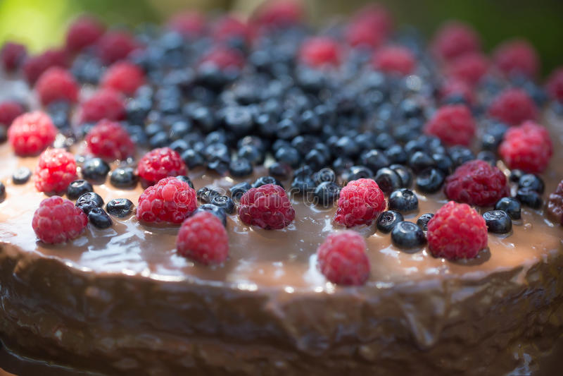 Вкусный торт с свежими ягодами стоковые изображения rf