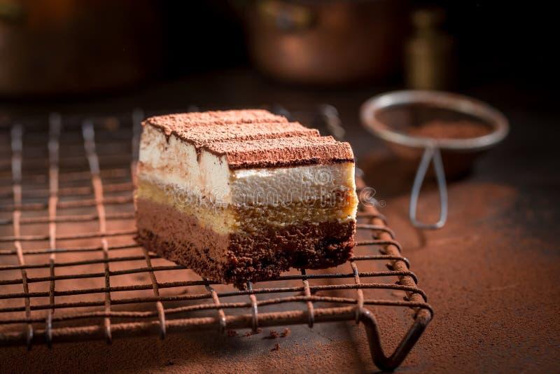 Вкусный торт тирамису с какао, mascarpone и печеньями стоковые изображения rf