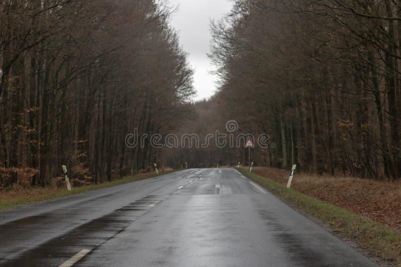 Влажная дорога горы в зиме стоковые изображения rf