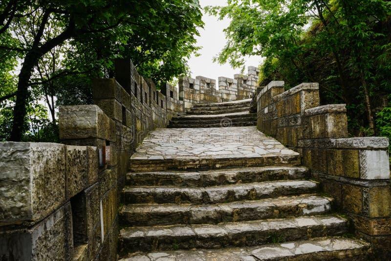 Влажная каменная дорожка стены горного склона в деревьях после дождя стоковое фото