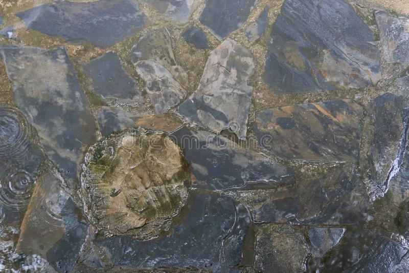 Влажная каменная текстура пола в дождливом дне стоковое фото rf