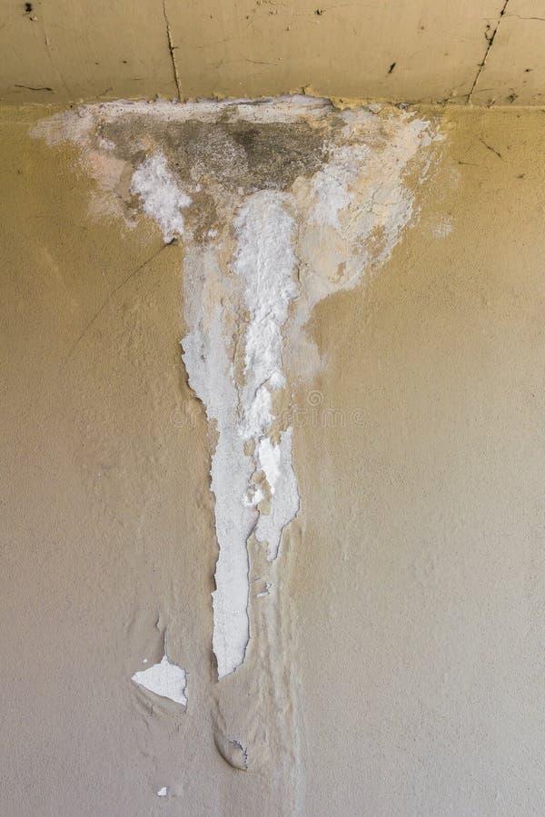 Влажная стена стоковое фото