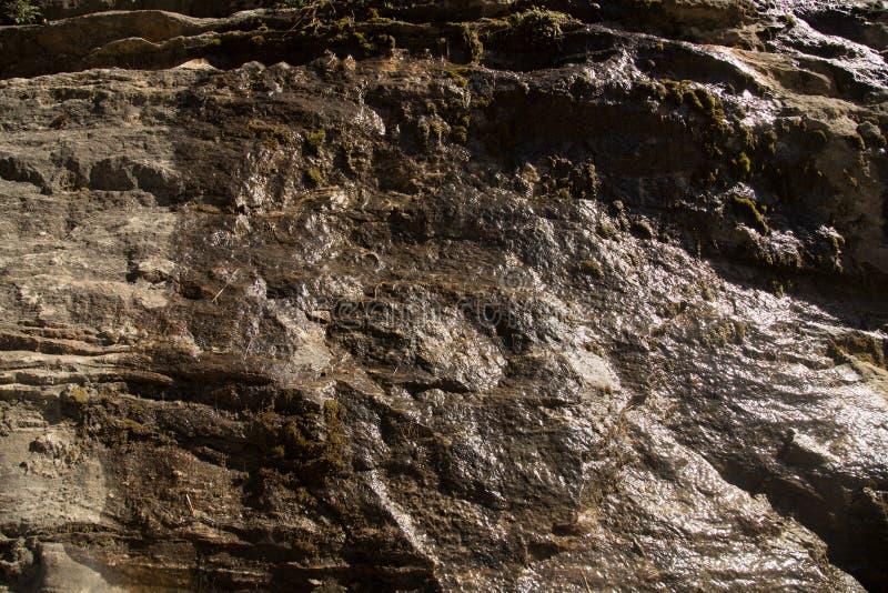 Влажная текстура стены утеса стоковые фото