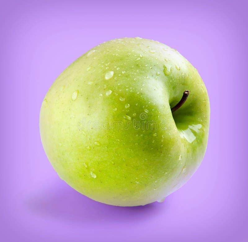 Влажное зеленое все яблоко стоковые фотографии rf