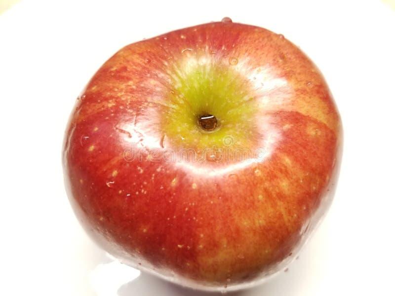 Влажное одиночное красное Яблоко стоковая фотография