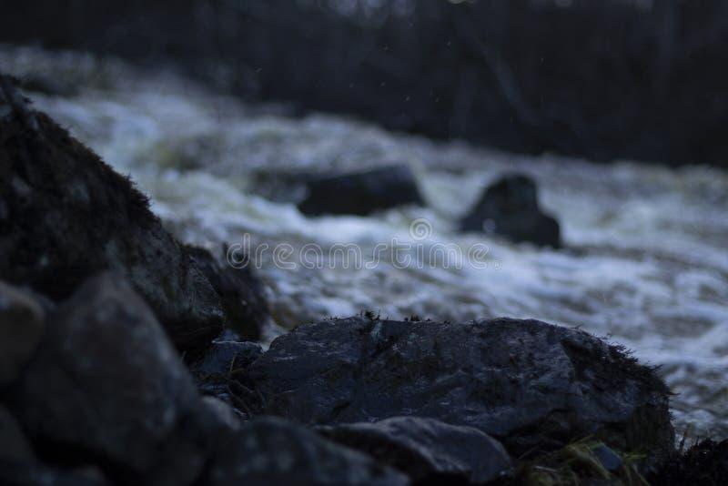 Влажные камни на переднем плане, поток весны обычно малого реки в лесе в северной Швеции стоковые фотографии rf