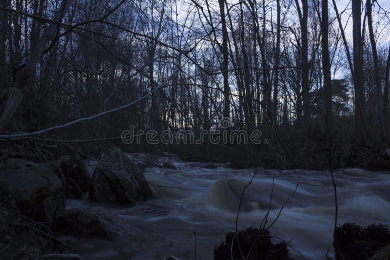 Влажные камни на переднем плане, поток весны обычно малого реки в лесе в северной Швеции стоковая фотография