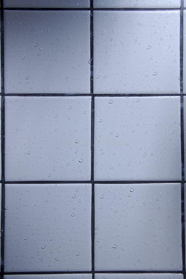 влажные плитки ливня стоковое изображение rf