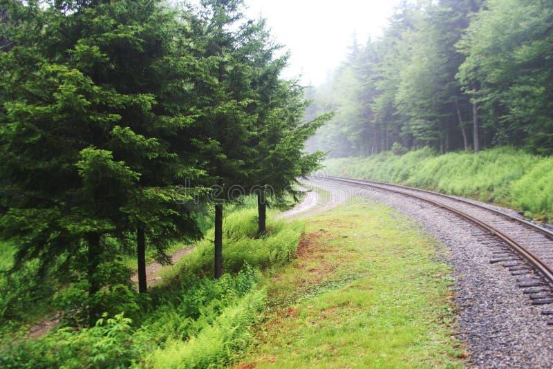 Влажный, езда утра на рельсах стоковое фото
