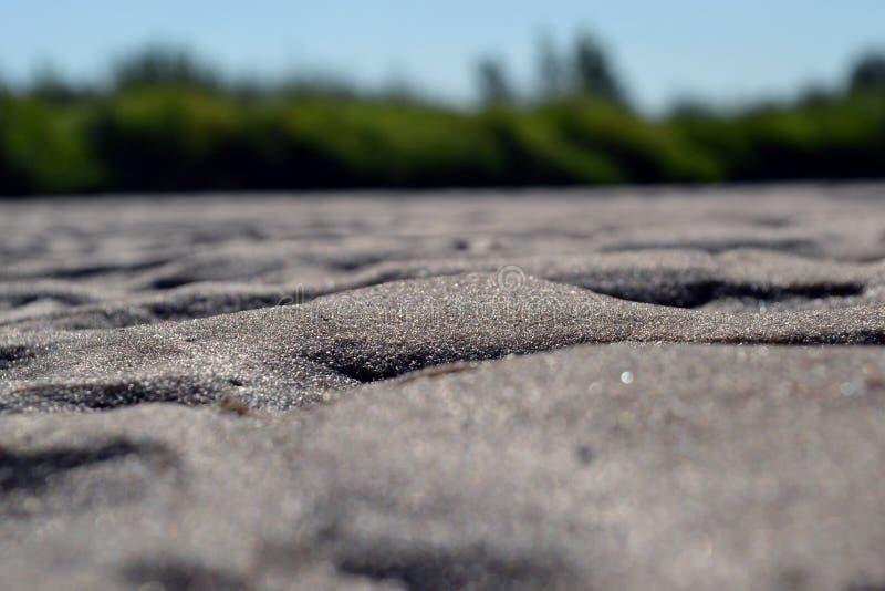 Влажный песок в солнечности стоковые изображения rf