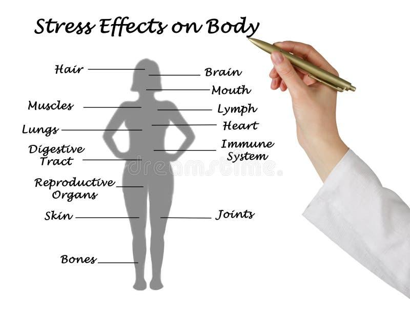 Влияния стресса на теле стоковые фотографии rf