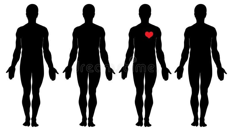 влюбленность анатомирования иллюстрация штока