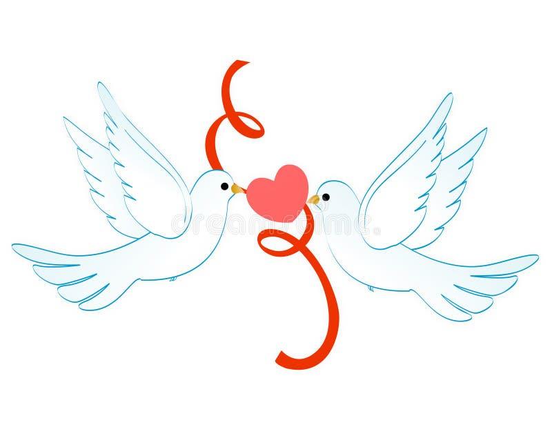 влюбленность голубей иллюстрация вектора