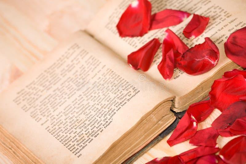 влюбленность книг i стоковые фотографии rf
