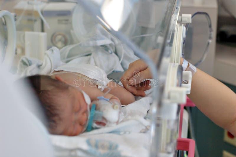 влюбленность чывства младенца моя стоковая фотография
