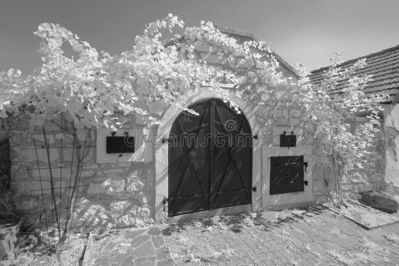 Внешний винный погреб, Австрия стоковое изображение