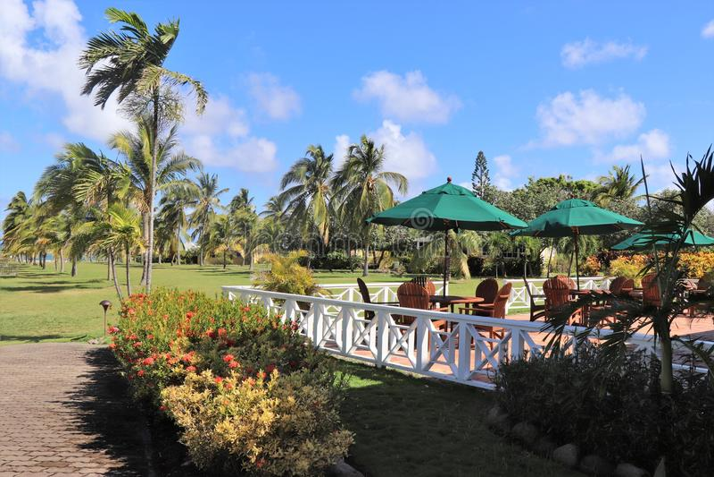 Внешняя зона еды на ресторане в тропическом положении стоковое изображение rf