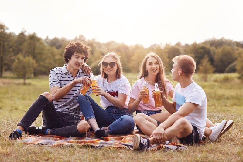 Внешняя съемка счастливого recreat 4 друзей во время летнего дня на природе, выпивает холодное пиво или сидр, имеет радостные выр стоковые фото
