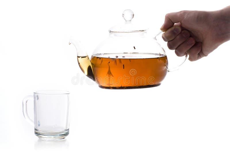 вне полейте чай стоковые изображения rf