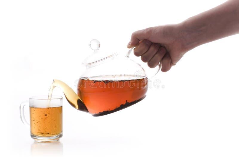 вне полейте чай стоковое фото rf