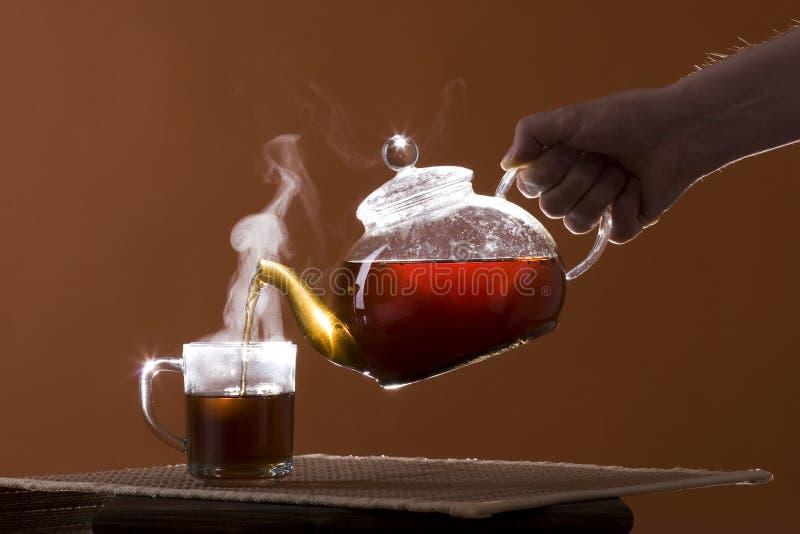 вне полейте чай стоковая фотография