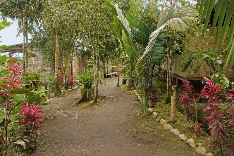 Внутреннее село индейца тропического леса Амазонкы стоковые фото