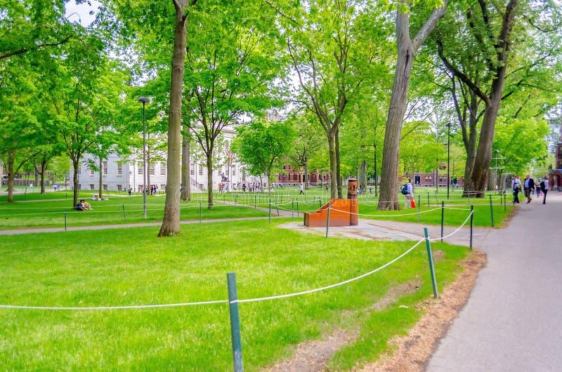 Внутренний кампус Гарвардского университета, Кембридж стоковые изображения rf