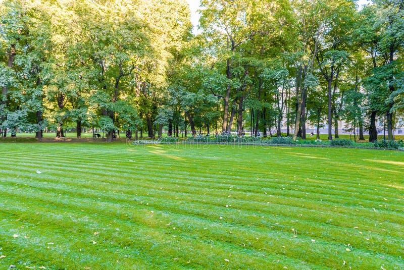 Внутренний сад Mikhailovsky, idillic парк в центральном St Petersbu стоковые фотографии rf